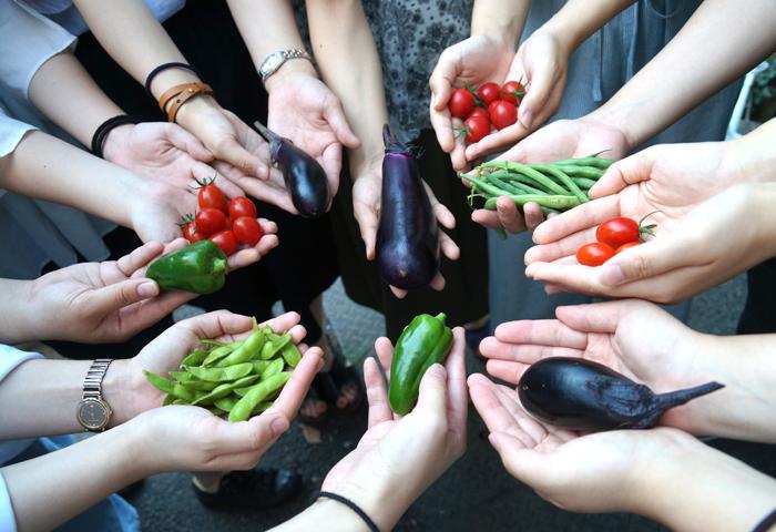古川ゼミ 幼稚園教育の実践 ・水遊びとチョウと夏野菜