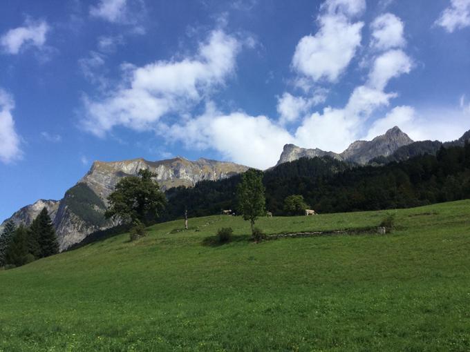 保育士コース ドイツ、スイスに研修旅行中!②