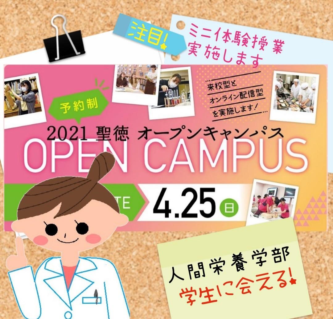 【OC】学生に会えるオープンキャンパス第2弾!~4/25(日)