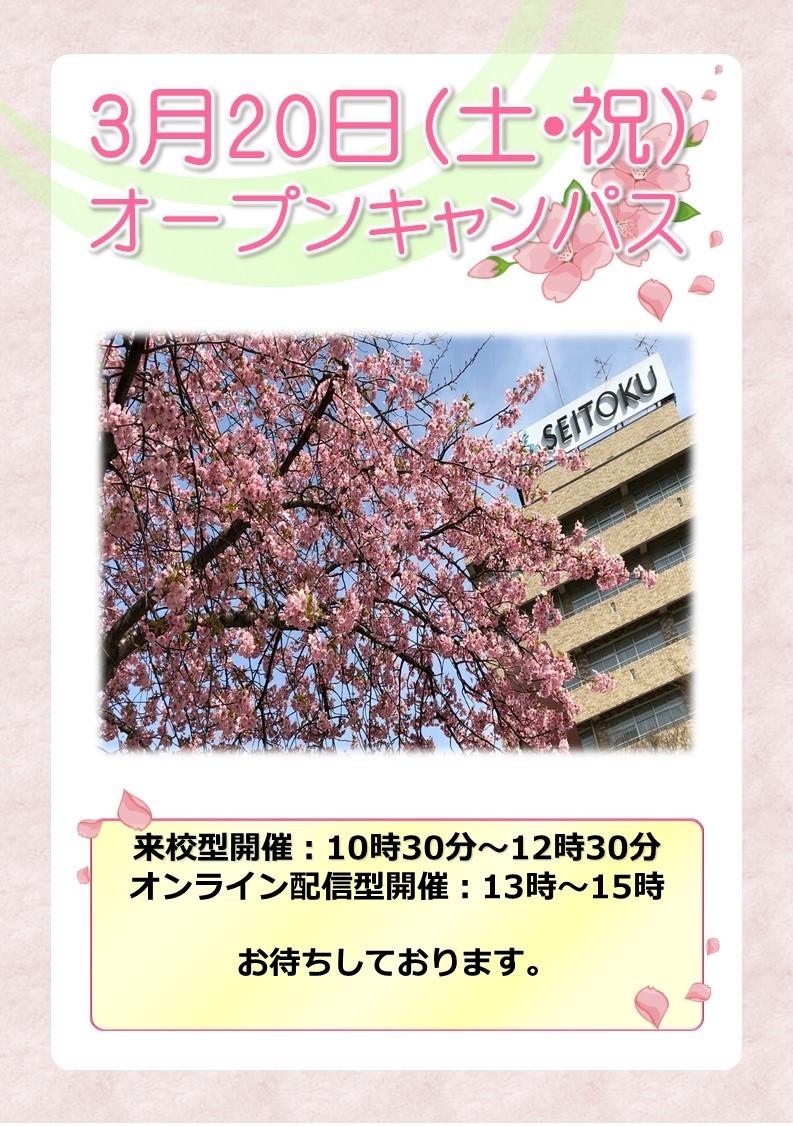 2021年3月12日 千葉県看護大学 春のオープンキャンパス開催